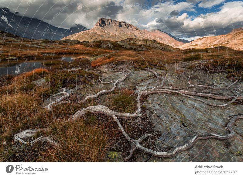 Pan du Lac, La Vampose, Französische Alpen Berge u. Gebirge Landschaft Natur Schweizer Gipfel See Europa Sommer Aussicht Eis blau Wasser Panorama (Bildformat)