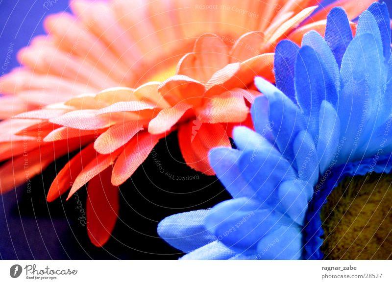 flowers2 blau orange Kitsch Stoffblüten