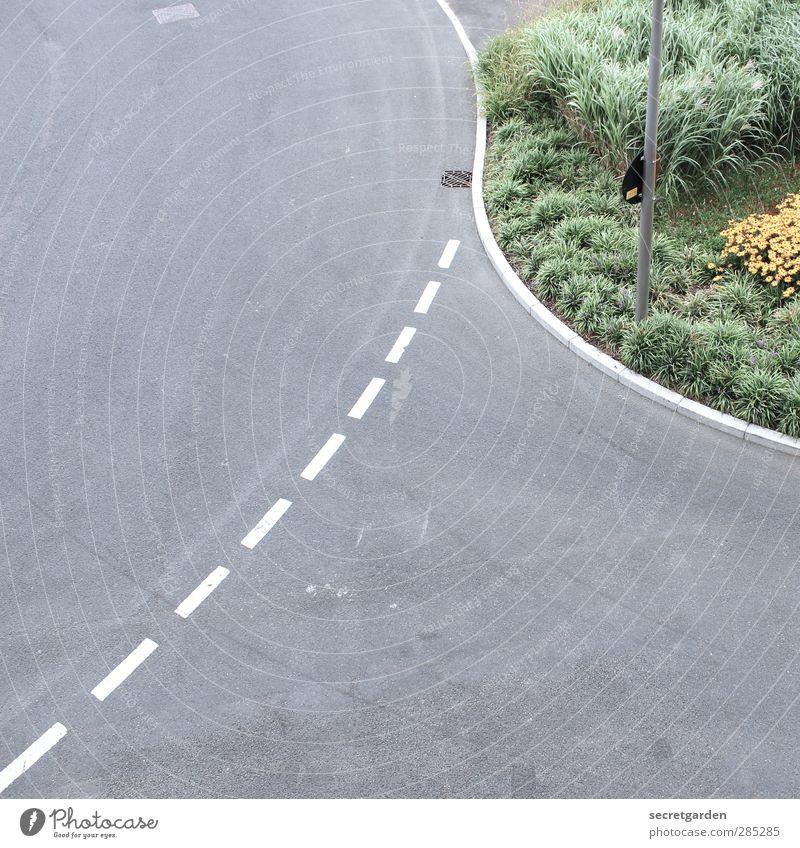 der tag der entscheidung. Verkehr Verkehrswege Straßenverkehr Straßenkreuzung Wege & Pfade Wegkreuzung grün violett weiß Abzweigung gestrichelt Linie Kurve