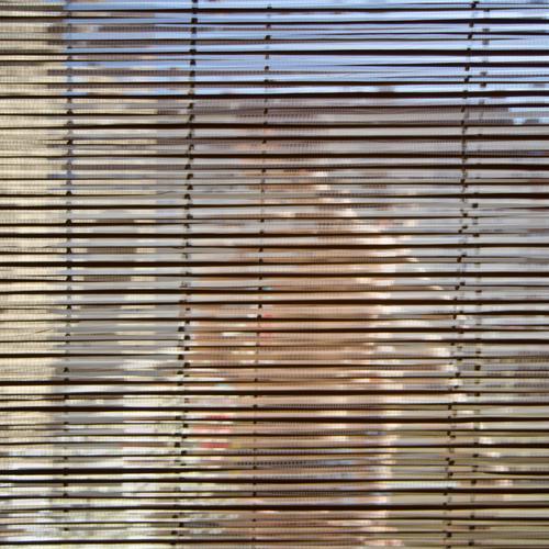 Verwirrung auf ganzer Linie Lifestyle Stil Häusliches Leben Wohnung Dekoration & Verzierung maskulin 1 Mensch Wolkenloser Himmel Berlin Balkon Fenster Rollo