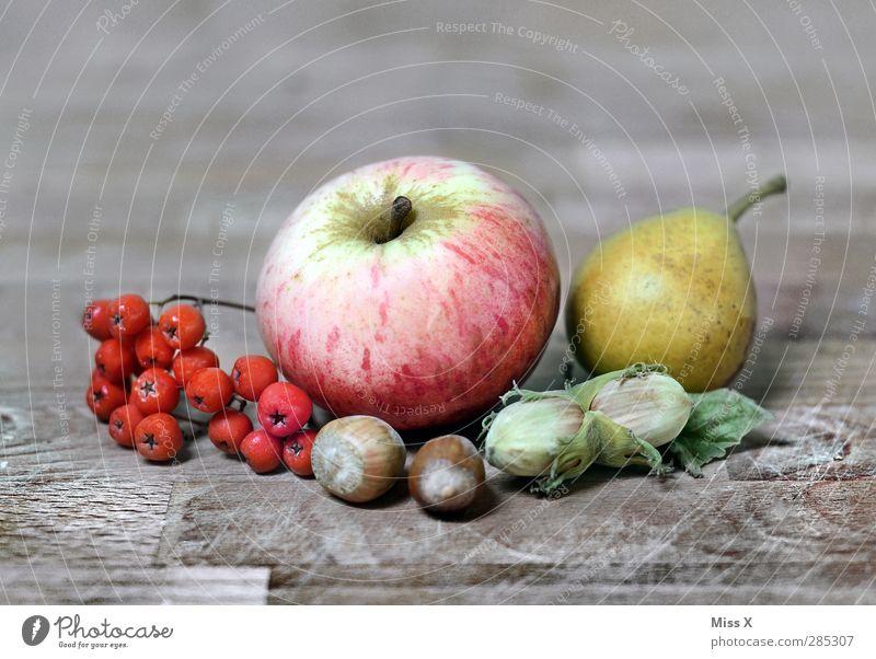 Herbstleben Lebensmittel Frucht Apfel Ernährung Erntedankfest Pflanze Blatt Gesundheit Holztisch Birne Vogelbeeren Beeren Haselnuss Nuss Stillleben herbstlich