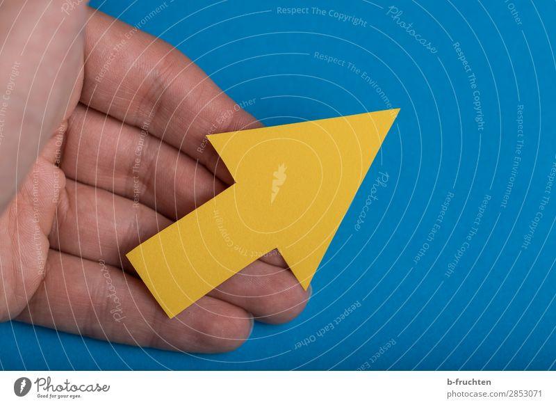 Diese Richtung Bildung Wirtschaft Kapitalwirtschaft Börse Karriere Erfolg Team Hand Finger Zeichen wählen gebrauchen festhalten blau gelb Pfeil aufwärts Zukunft