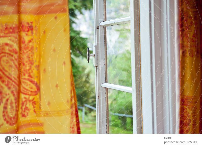 Willkommen und Abschied Umwelt Natur Urelemente Luft Sommer Klima Schönes Wetter Fenster alt authentisch natürlich grün orange Neugier Elbsandsteingebirge