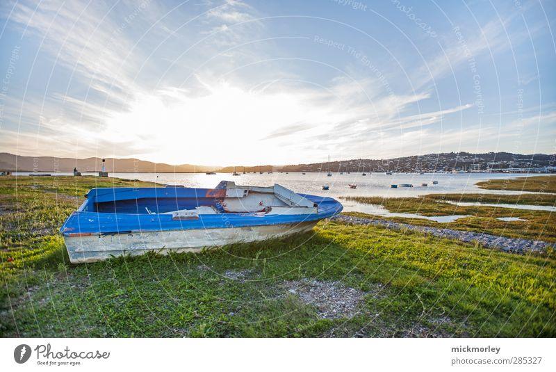 Bootsfahrt ins Grüne Natur blau Ferien & Urlaub & Reisen Wasser grün Landschaft Umwelt Gefühle Küste Freiheit See träumen Stimmung Erde Freizeit & Hobby