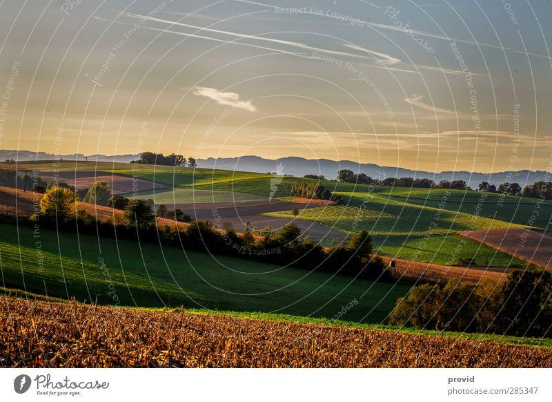 soft land Natur Pflanze Sommer Sonne Landschaft Ferne Umwelt Gras Freiheit Horizont Luft Freizeit & Hobby Tourismus wandern Sträucher Ausflug
