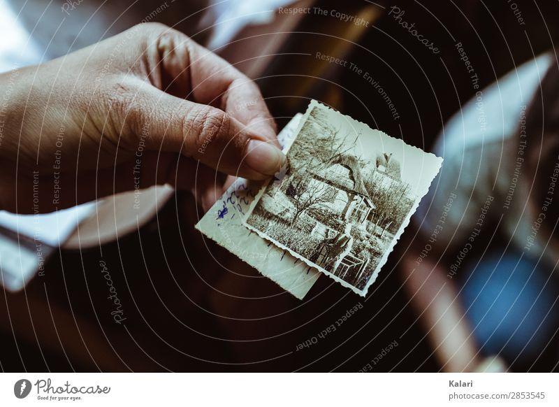 Ein anderes Leben 4 Großeltern Senior Hand Finger 1 Mensch Kitsch Krimskrams Sammlung Sammlerstück entdecken alt historisch authentisch Beginn Erfahrung erleben