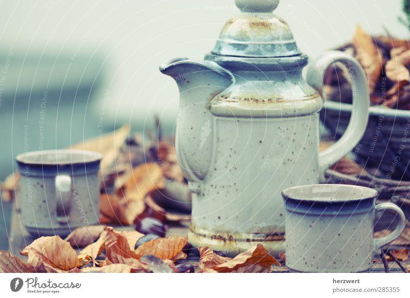 Would you like some tea? blau Erholung Herbst grau braun Stimmung genießen Wohlgefühl Geschirr Tee Ernährung Getränk Lebensmittel