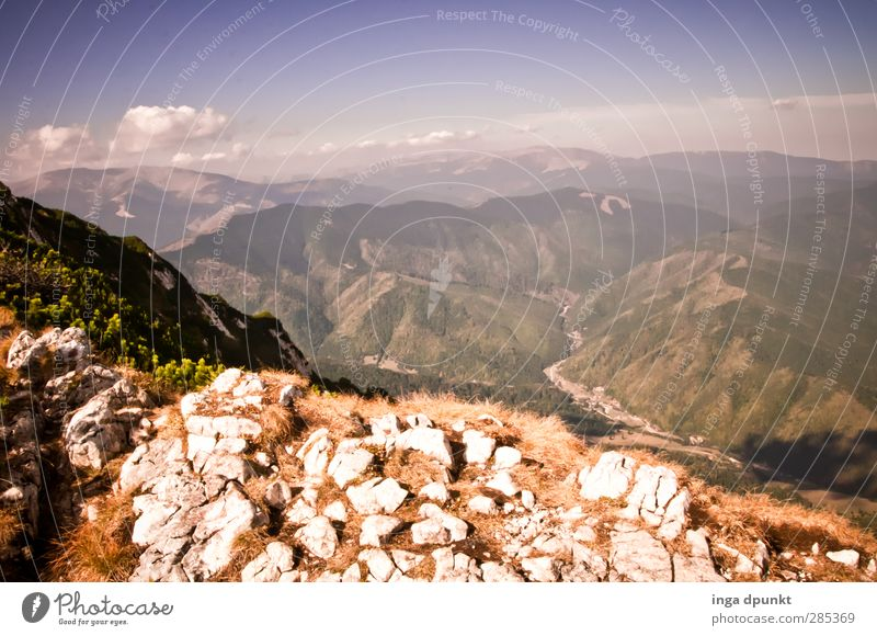 Ferne sehen Umwelt Natur Landschaft Pflanze Sommer Wetter Schönes Wetter Felsen Berge u. Gebirge Rumänien Siebenbürgen Karpaten Abenteuer Aussicht Gipfel Tal