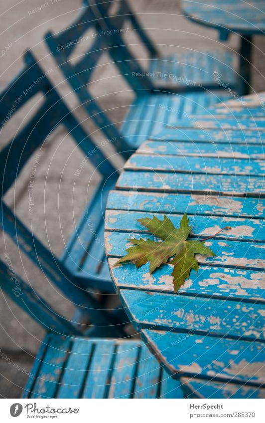 Vergänglichkeit Restaurant Herbst Blatt Stadt Holz alt ästhetisch blau ruhig Einsamkeit Straßencafé Tisch Stuhl abblättern Farbstoff Herbstlaub Herbstbeginn