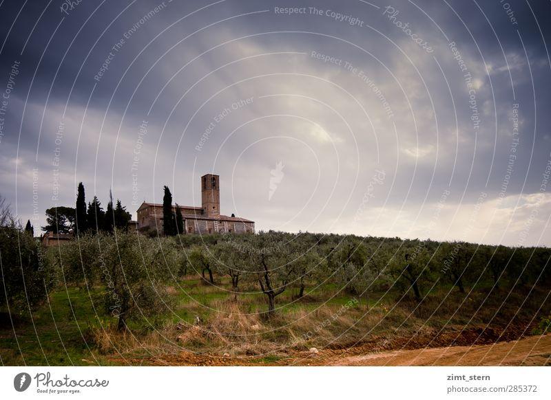 Die tapfere Kirche Natur blau Ferien & Urlaub & Reisen grün Landschaft Horizont braun Feld Tourismus Ausflug Urelemente Macht bedrohlich Italien Landwirtschaft