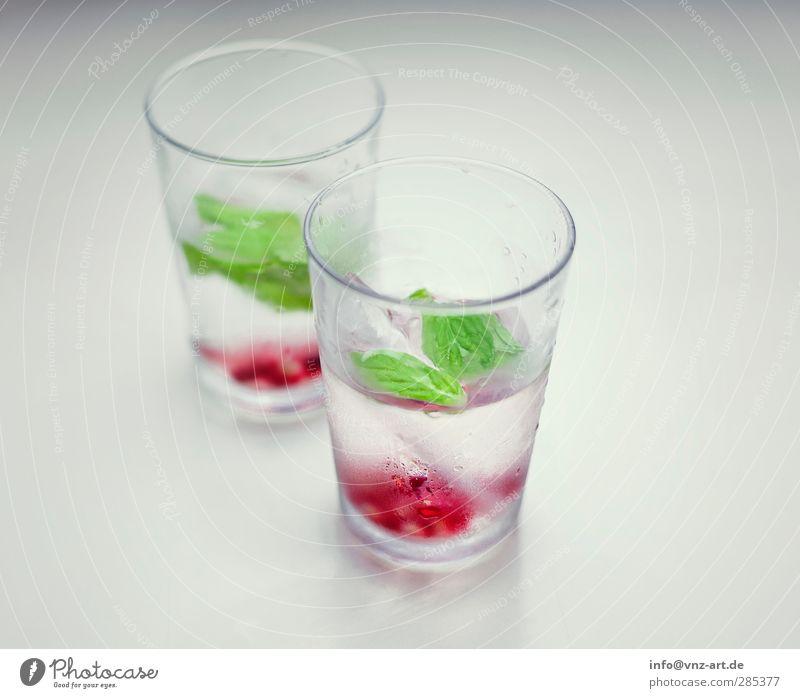 Minz & More grün rot kalt Feste & Feiern Glas frisch Lifestyle Getränk Coolness trinken Bar Cocktail Nachtleben Minze Granatapfel Cocktailbar