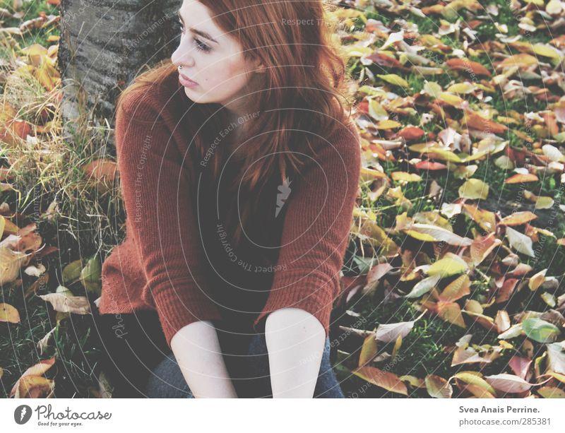 frau herbst. Mensch Natur Jugendliche Blatt Erwachsene Gesicht Umwelt Wiese Herbst feminin Haare & Frisuren 18-30 Jahre Park sitzen Sehnsucht Rock