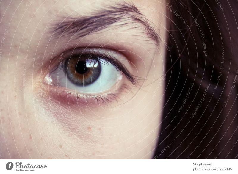 Die Seherin. Mensch blau grün weiß Auge kalt feminin Haare & Frisuren grau braun authentisch Kommunizieren beobachten einzigartig Neugier geheimnisvoll