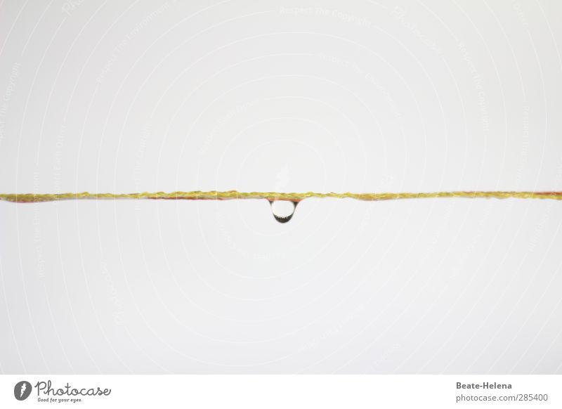 Der bringt so manches Fass zum Überlaufen weiß Winter gelb kalt Schnee Wetter ästhetisch Wassertropfen Wandel & Veränderung Schnur einfach Kunststoff Zaun Barriere schlechtes Wetter Fass