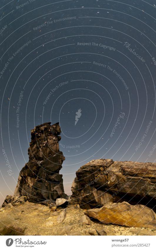 Sternenspuren Natur Landschaft Himmel Wolkenloser Himmel Nachthimmel Sommer Felsen Berge u. Gebirge Harz Vorharz Unendlichkeit Stativ Farbfoto Gedeckte Farben