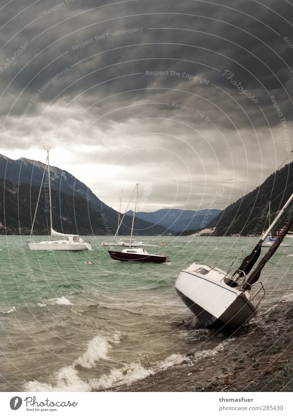 Fönsturm Segeln Abenteuer Wellen Berge u. Gebirge Segelboot Landschaft Wasser Himmel Wolken Gewitterwolken Unwetter Wind Sturm Alpen Seeufer Bucht Sportboot
