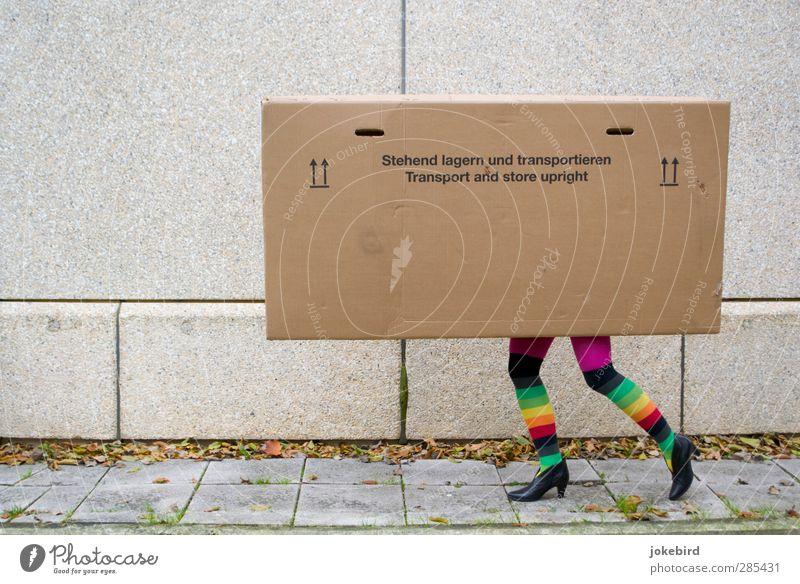 Stehend lagern und transportieren lustig gehen Beine laufen stehen Güterverkehr & Logistik Umzug (Wohnungswechsel) Papier Kasten Karton Strümpfe Strumpfhose Post gestreift Verpackung Paket