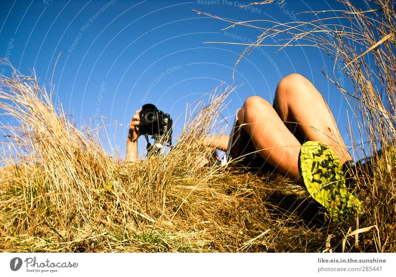 ein bett im kornfeld* Freizeit & Hobby androgyn Arme Hand Beine Fuß 1 Mensch Umwelt Natur Himmel Wolkenloser Himmel Sommer Herbst Schönes Wetter Sträucher Feld