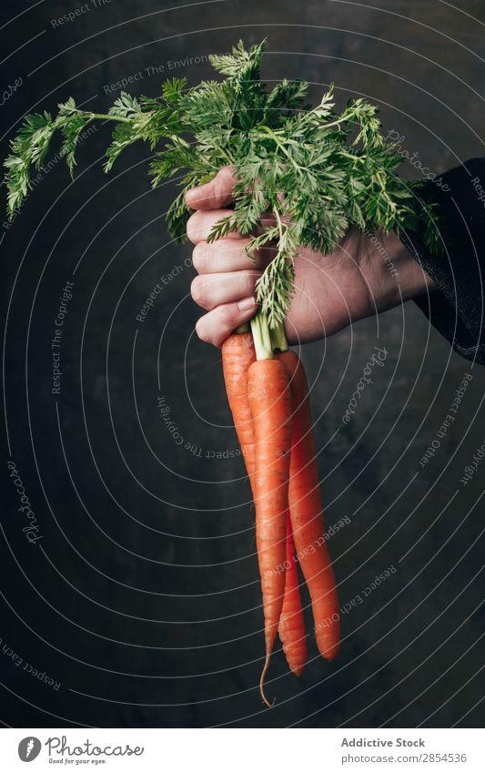 Hand hält einen Haufen frischer Karotten. Hintergrundbild Bündel Möhre mehrfarbig dunkel Lebensmittel Ernte Gesundheit Halt Metall Ernährung Orange organisch
