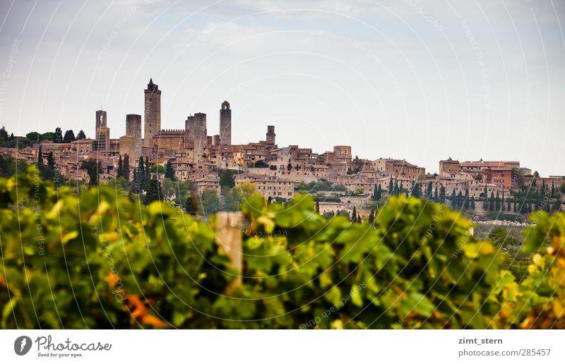 Weinberge vor S.G. Himmel Natur Ferien & Urlaub & Reisen blau grün Landschaft Ferne Herbst Gebäude außergewöhnlich braun Tourismus leuchten hoch Ausflug Italien