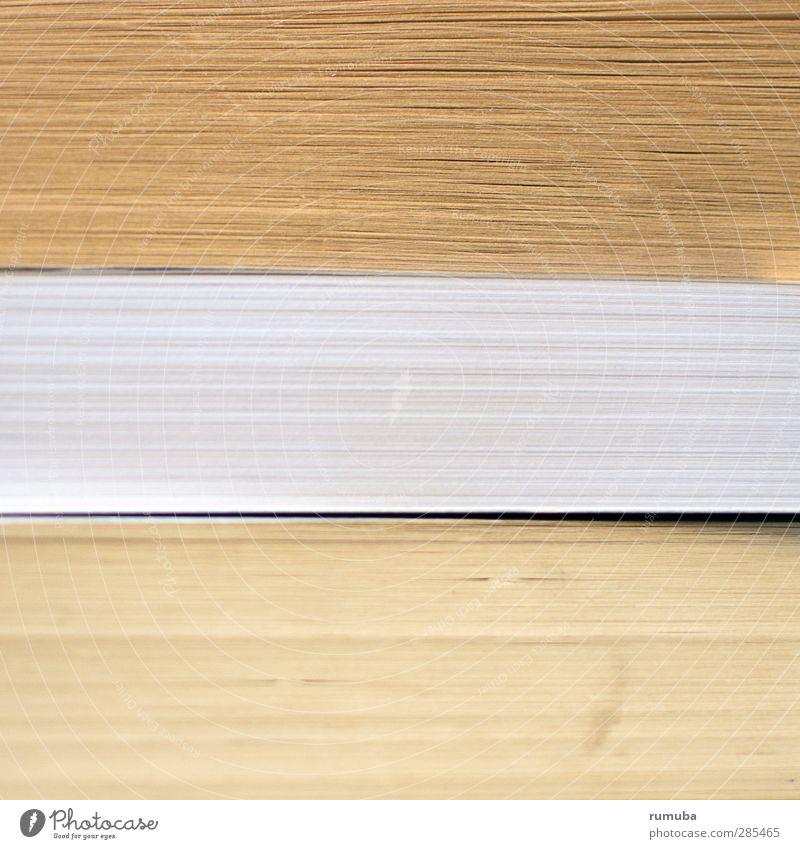 Bücher Hochstapelei lesen Bildung lernen Prüfung & Examen Buch Erfolg Interesse Wissen Stapel bücherstapel antiquarisch Antiquariat Literatur Verlag Farbfoto