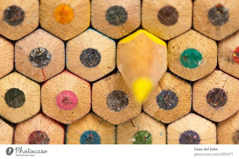 colouring pencils Basteln Handarbeit Schreibwaren Schreibstift Spielzeug Holz zeichnen schreiben hell nah blau mehrfarbig gelb grün rosa schwarz malen Farbstift