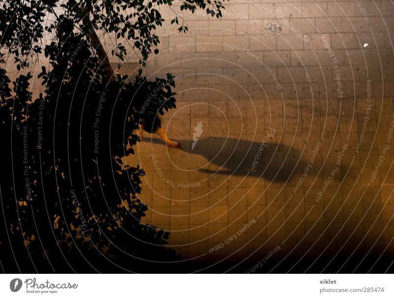 Schatten Ferien & Urlaub & Reisen Städtereise Nachtleben Beine Fuß 1 Mensch Stadt Fußgängerzone Straße Bewegung gehen genießen dunkel elegant feminin braun gelb