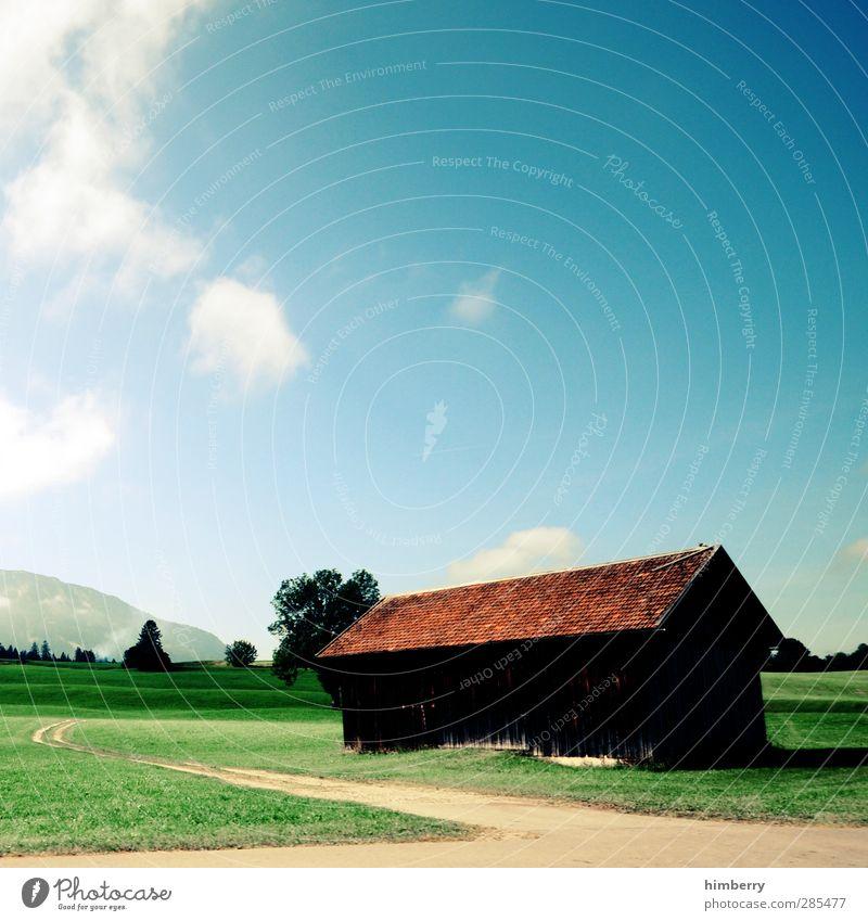 hüttenzauber Ferien & Urlaub & Reisen Sommer Landschaft Erholung Berge u. Gebirge Straße Gras Wege & Pfade Architektur Freiheit Gebäude Fassade Zufriedenheit