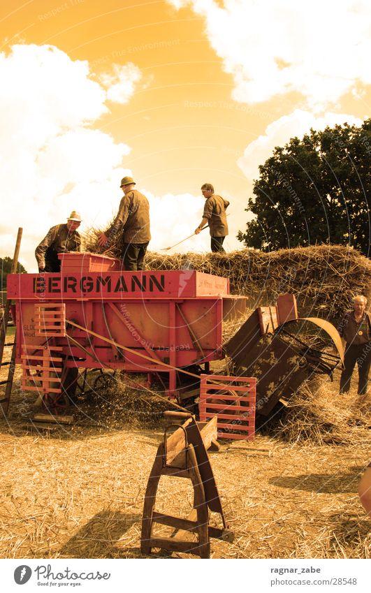 man at work Menschengruppe Landwirt früher
