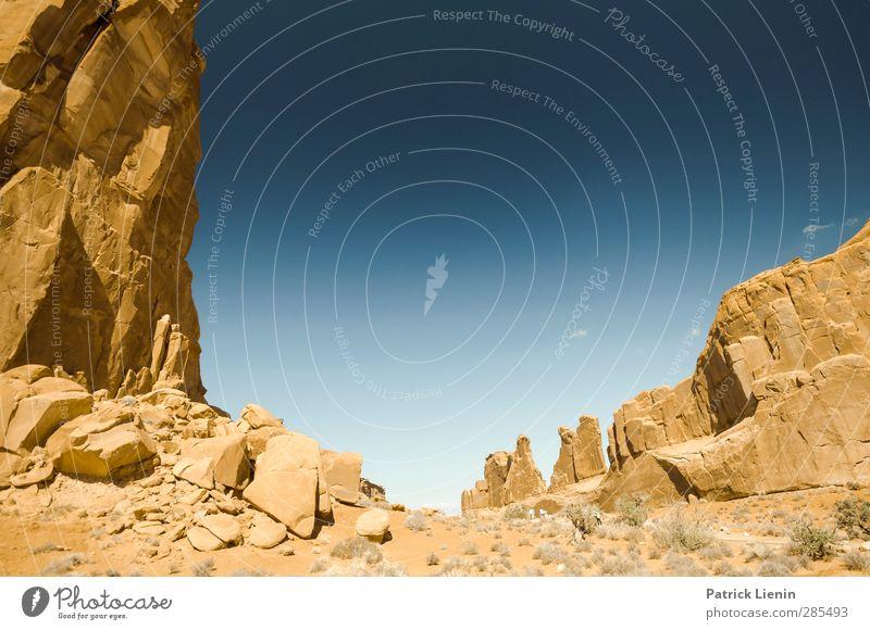 Wild West Ferien & Urlaub & Reisen Tourismus Ausflug Abenteuer Ferne Freiheit wandern Umwelt Natur Landschaft Urelemente Sand Luft Himmel Wolkenloser Himmel
