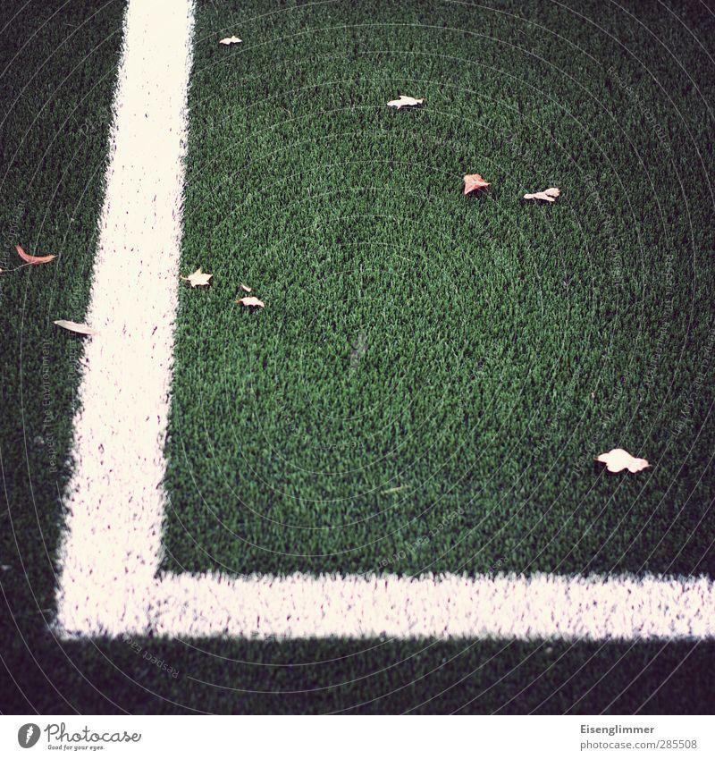 [wpt HH 10.12] Seitenlinie grün weiß Blatt Sport Linie Fußball Fußballplatz Begrenzung Ordnungsliebe Kunstrasen