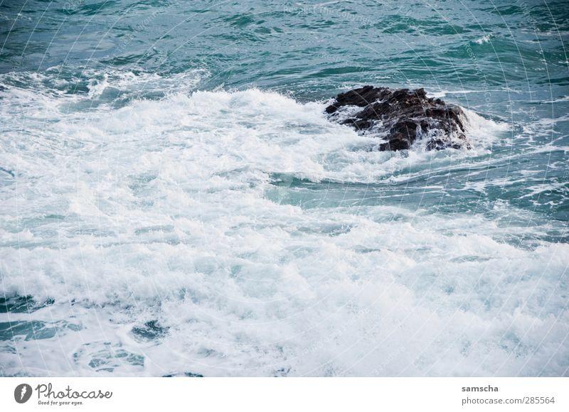 Wellengang Meer Natur Wasser Küste nass wild Abenteuer Meerwasser Surfen Wellenform Wellenschlag Felsen Felsküste Gischt Wellenbruch Wasseroberfläche blau