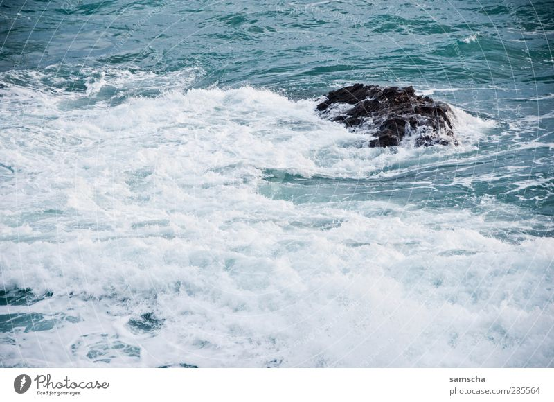 Wellengang Natur blau Wasser Meer Strand Küste Stein Felsen Schwimmen & Baden wild nass Abenteuer Surfen Wasseroberfläche fließen