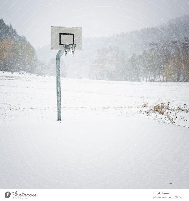 Game Over Ballsport Basketball Basketballplatz Landschaft Winter Unwetter Schneefall Wiese Wald kalt trist Einsamkeit Ende Langeweile Gedeckte Farben