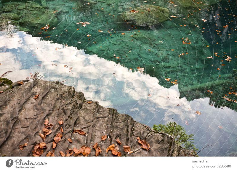 reflections Angeln Natur Landschaft Wasser Seeufer Teich Flüssigkeit nass Abenteuer Teichufer Gebirgssee Waldsee Herbstlaub Herbstwetter deutlich