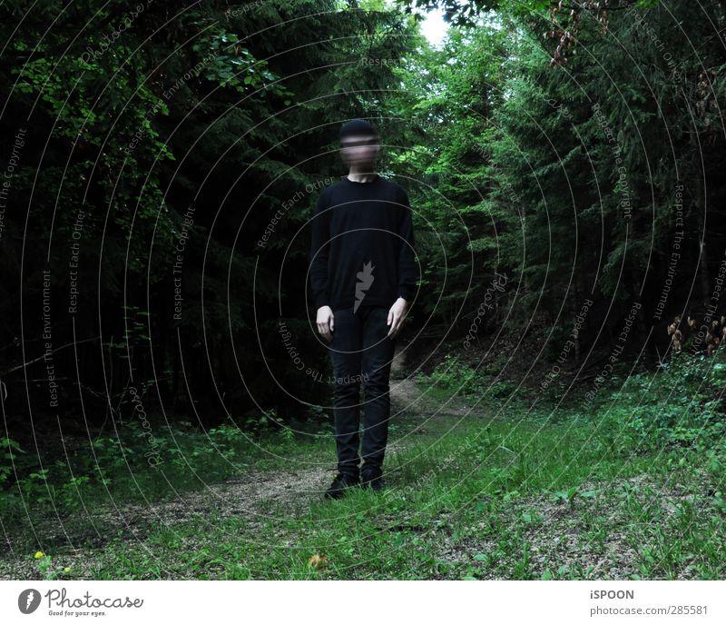BLUR Mensch maskulin Junger Mann Jugendliche Körper 1 18-30 Jahre Erwachsene Baum Wald Blick stehen außergewöhnlich bedrohlich dunkel grün schwarz Einsamkeit