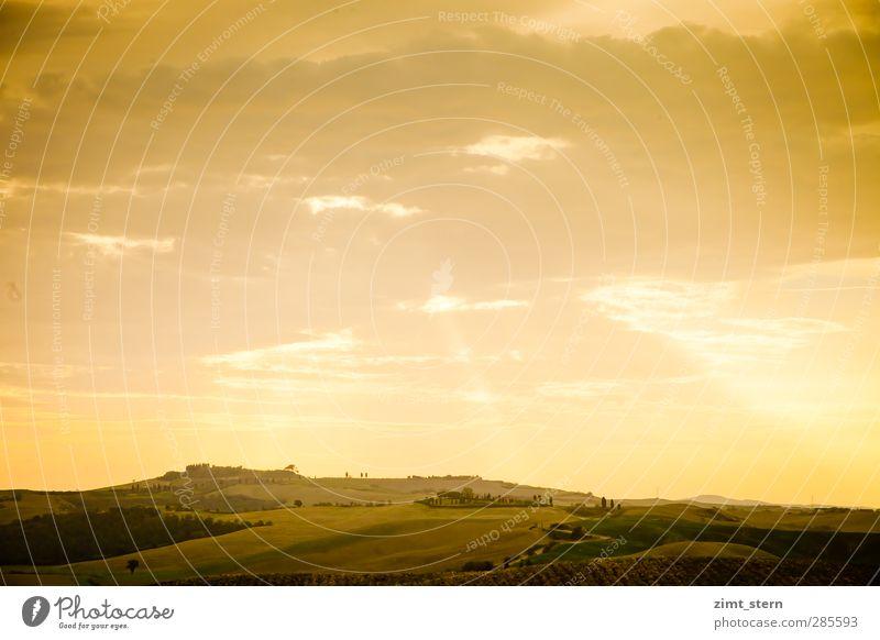 Apokalypse toskanisch Himmel Natur Ferien & Urlaub & Reisen Baum Wolken ruhig Landschaft gelb Horizont Feld Tourismus Ausflug ästhetisch Schönes Wetter Idylle