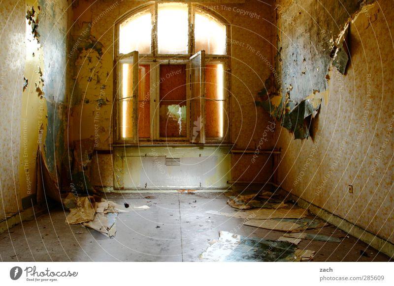 Mach es zu Deinem Projekt alt Haus Fenster Wand Architektur Mauer Gebäude braun Fassade Beton Häusliches Leben kaputt Vergänglichkeit Tapete Verfall Ruine