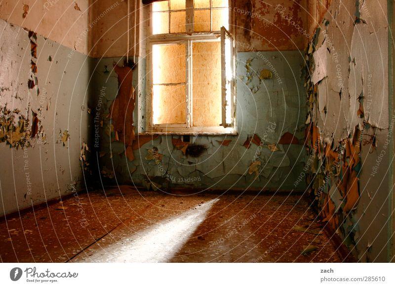 Mach es zu Deinem Projekt Haus Ruine Gebäude Architektur Mauer Wand Fassade Fenster Beton Häusliches Leben alt kaputt braun Verfall Vergänglichkeit Renovieren