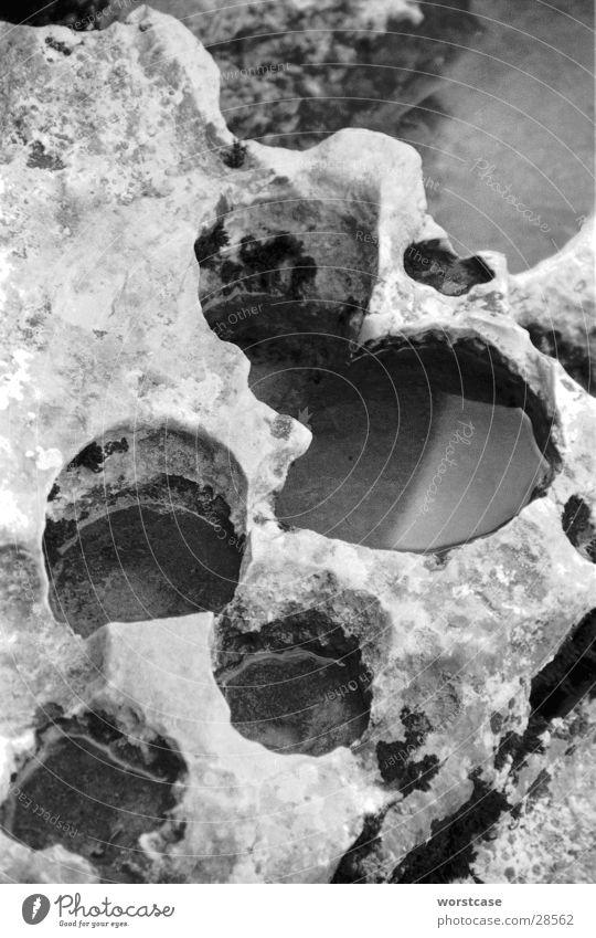 erosionslöcher Wasser Erosion Kalkstein