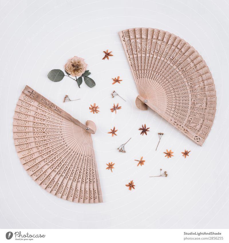 Elegante Holzfächer und Trockenblumen elegant Design schön Dekoration & Verzierung Handwerk Kunst Natur Pflanze Blume Rose Blüte natürlich retro wild rosa weiß
