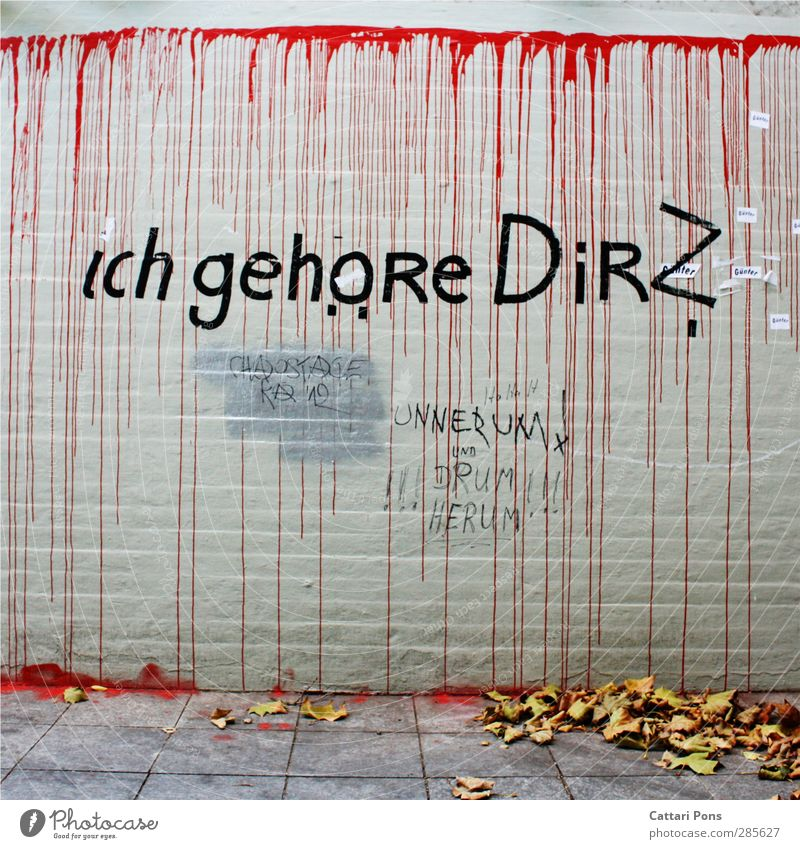 ich gehöre Dir? Mauer Wand Stadt Graffiti Text Dinge welk Blatt Herbst rot Farbe Straßenkunst Fragen Besitz Liebe besessen verrückt Stein Farbfoto Außenaufnahme