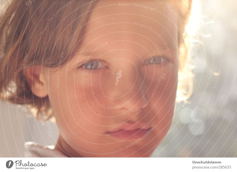 Me in your eyes Mensch maskulin Junge Kindheit Leben Kopf Gesicht 1 8-13 Jahre blond authentisch hell schön nah natürlich weich Gefühle Stimmung Kraft