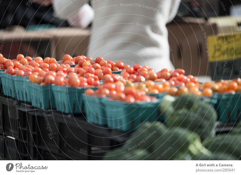 down at the market Gesundheit Zusammensein Lebensmittel frisch Gemüse Bioprodukte Markt Tomate Fasten verkaufen Präsentation Vegetarische Ernährung