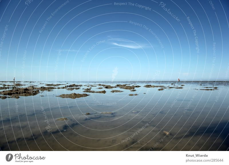 Viel Watt Mensch Natur Landschaft Himmel Sommer Küste Nordsee wandern Ferne Unendlichkeit blau braun Ferien & Urlaub & Reisen Umwelt Wattenmeer Meer Ebene