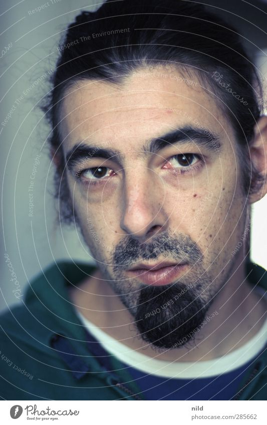 Blick in die Kamera Mensch Mann Jugendliche Erwachsene Gesicht Haare & Frisuren Junger Mann Kopf 18-30 Jahre maskulin Nase Coolness Freundlichkeit hören Bart