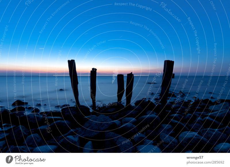 Morgendämmerung am Kap II Natur Himmel Wolkenloser Himmel Stern Horizont Sonnenaufgang Sonnenuntergang Frühling Schönes Wetter Küste Strand Ostsee Einsamkeit
