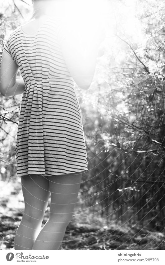lightscapes | feminin Junge Frau Jugendliche Frauenbein 1 Mensch 18-30 Jahre Erwachsene Herbst Schönes Wetter Baum Wald Mode Kleid stehen träumen Kreativität