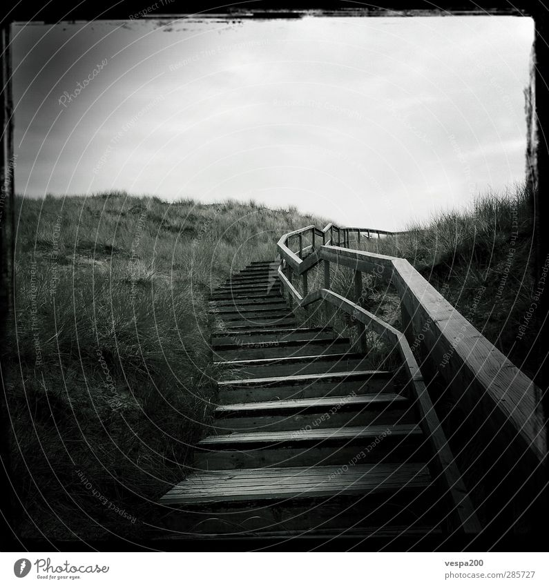 stairway to beach Ausflug Abenteuer Ferne Freiheit wandern Natur Landschaft Pflanze Erde Sand Himmel Wolken Frühling Klima Wind Gras Wildpflanze Hügel Gipfel