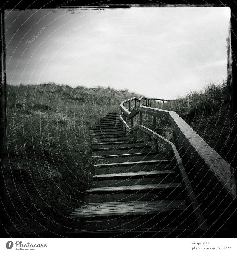 stairway to beach Himmel Natur weiß Pflanze Strand Wolken Landschaft schwarz Ferne dunkel Gras Frühling Küste Freiheit Sand Wind